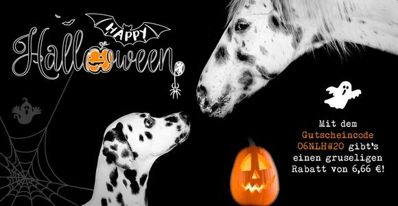 Gruselig guter Gutschein über 6,66 € zu Halloween