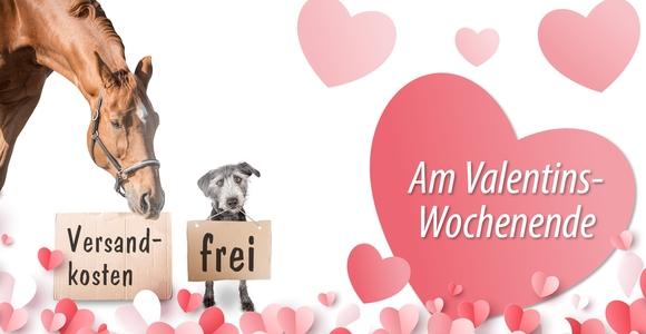 Zum Valentinstag: Wir schenken Ihnen die Versandkosten