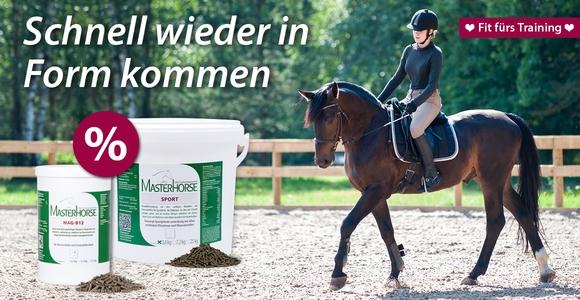 So machen Sie Ihr Pferd fit fürs Frühjahrstraining!
